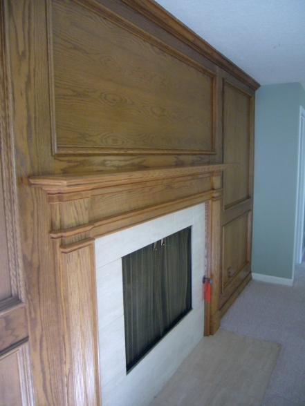 {Fireplace molding facade}