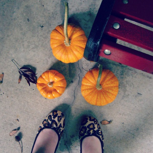 bench + shoes + pumpkins